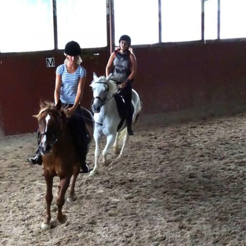 Alpadia Biarritz Summer Camp Premium+ Horseriding activity