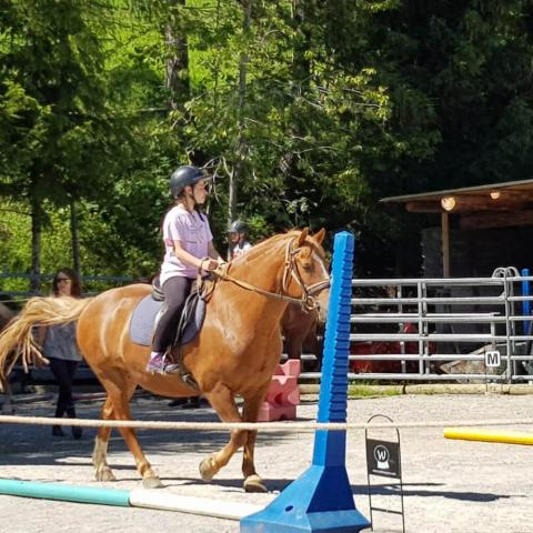Alpadia Leysin Language Camp Premium+ Horse riding activity
