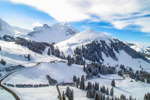 Enjoy trips to the Swiss Alps with Alpadia Zurich Language school