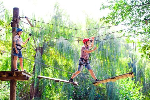 Tree top adventures in Lyon, Alpadia Lyon